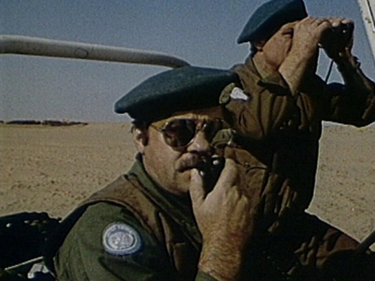 «Каир-2» вызывает «Альфу»