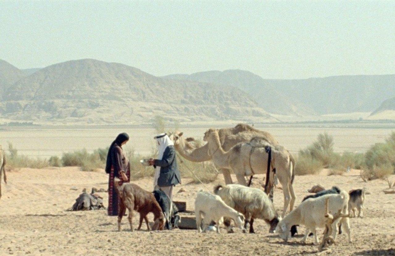 Бедуин