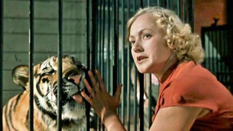 ТЕСТ: Угадайте героя фильма «Укротительница тигров» по цитате!